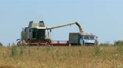 Unloading wheat harvester Stock Footage
