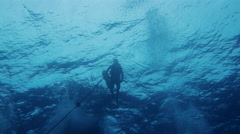 Scuba Diving Underwater off the South Pacific Island of PALAU - stock footage