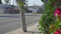 Street in Compton Stock Footage
