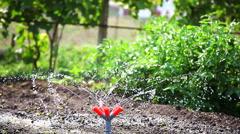Watering garden equipment. Stock Footage