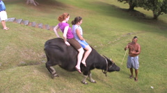 Tourists Riding a Water Buffalo with Local Guide in GUAM, USA Stock Footage