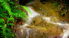 Beautiful Natural Waterfall in Tropical Paradise, with Sound Stock Footage