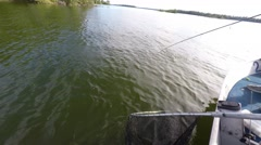 Mediaum size Northern Pike pulled in and netted - stock footage