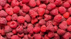 Raspberry background Stock Footage
