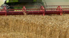 Harvester gathers the wheat Stock Footage