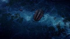 Trilobita,3DMAX Stock Footage