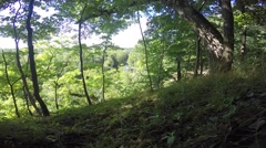 Hillside looking down on sunny breezy summer day Stock Footage