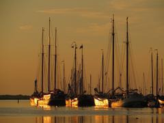 Classic Charter sailboats in the evening sun in Makkum (Holland) Stock Photos