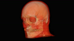 3D Medical Scan Full Skull 360 rotation (seamless) 4k - stock footage