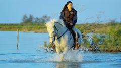 Cowboy female Camargue bull animal wild horse rider water - stock footage