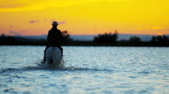 Cowboy Camargue animal horse sunset sea marshland - stock footage