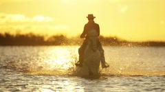 Cowboy Camargue rider animal horse sunrise galloping water - stock footage