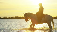 Cowboy Camargue rider animal horse sunset galloping sea - stock footage