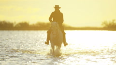 Cowboy Camargue France rider animal horse sunrise wetland - stock footage