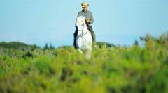 Cowboy France Camargue rider grey horse energy livestock - stock footage