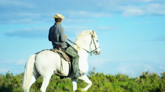Cowboy France Camargue rider grey horse tourism travel Stock Footage