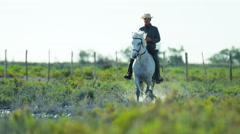 Cowboy France Camargue rider white horse wetland freedom travel - stock footage