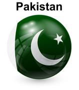 Pakistan official state flag Stock Illustration