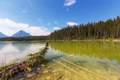 Lake in Jasper - stock photo