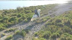Aerial cowboy Camargue wetland livestock coastline Mediterranean - stock footage