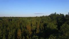 Aerial Stunning Nature Forrest Sunset shot Drone 4K Stock Footage