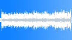 Stock Music of Amaneciendo Puya Vallenata