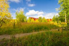Autumn approaches Stock Photos