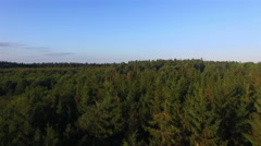 Stunning Aerial drone 4K shot Treetops Forrest Stock Footage