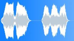 Female cowboy woo hoo shout Sound Effect