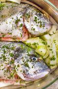Flavor sea bream using fennel as dressing Stock Photos