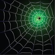 Spider web with spider - stock illustration