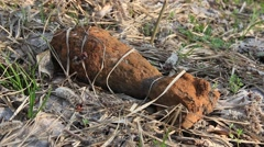 Mortar shell 2nd World War, rusty mortar shell on a grass Stock Footage