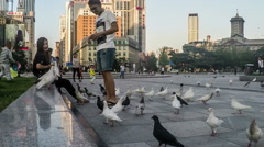People have fun with pigeons at square of Dalian, China. Stock Footage