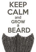 Keep Calm and grow a Beard - stock illustration