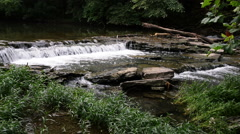 Beargrass Creek in Louisville. - stock footage