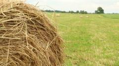 Hay balls on fiels organic farming footage Stock Footage