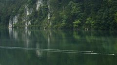 Ducks on Alpsee, Neuschwanstein Castle Stock Footage