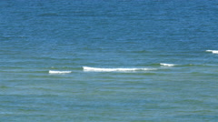 Small waves can be seen on the sea water Stock Footage