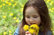Stock Photo of Girl smelling dandelions in spring