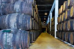 cellar with wine barrels - stock photo