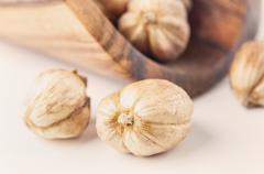 White cardamom isolated on white background closeup - stock photo