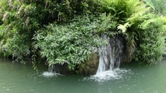 Small waterfall in jungle spring Stock Footage