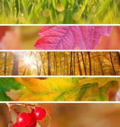 Set of Different Autumn Banners  for Internet, beautiful Autumn season - stock photo