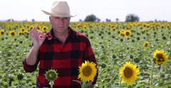 Confident Farm Owner Good Sun Flower Harvest Satisfied Ok Sign Hand Gesture Stock Footage