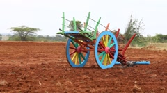 Bull cart at rural area fields Stock Footage