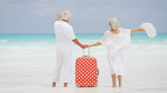 Senior Caucasian couple standing on a Caribbean beach with a suitcase Stock Footage