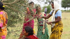 Women working at rural area Stock Footage
