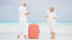 Laughing Caucasian seniors on a tropical beach with a camera and suitcase - stock footage
