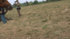 Horses noses and necks, in field, CU Slo mo Stock Footage