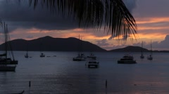Sunset in Tortola BVI through silhouetted Palms Stock Footage